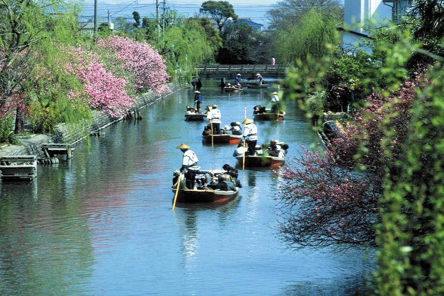 九州萌熊電車•太宰府旅人列車•大分久住公園•柳川扁舟4日