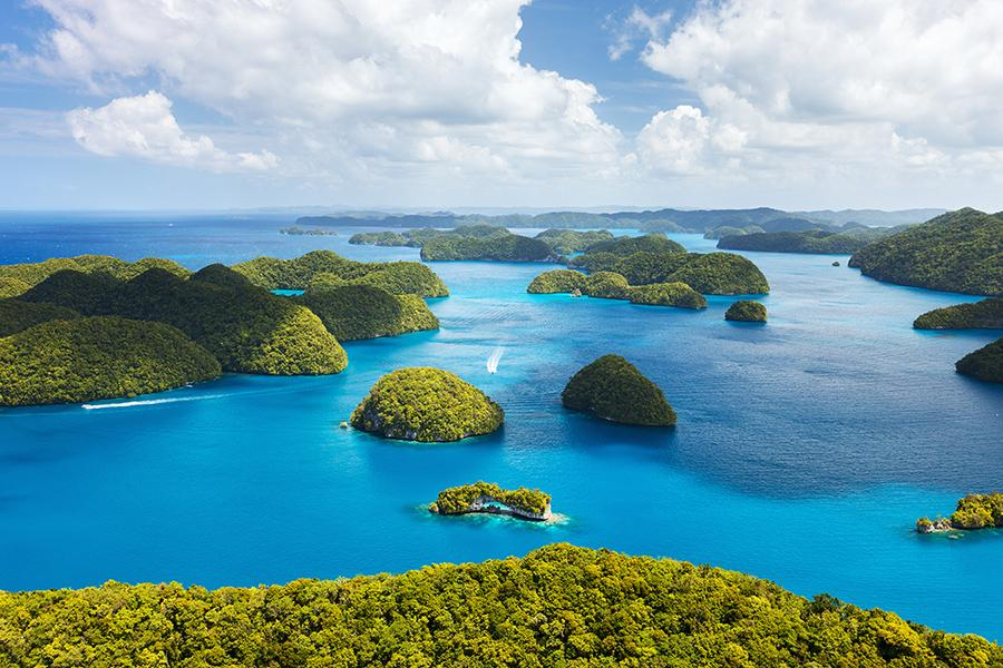 帛琉精選二次出海、大斷層、海豚灣、獨木舟4日-PALAU HOTEL