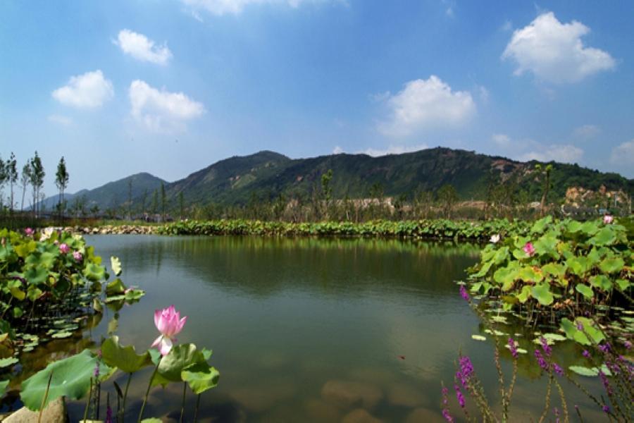 【華信假期】無錫惠山古鎮、蘇州藕園手搖船、上海新天地風情四日