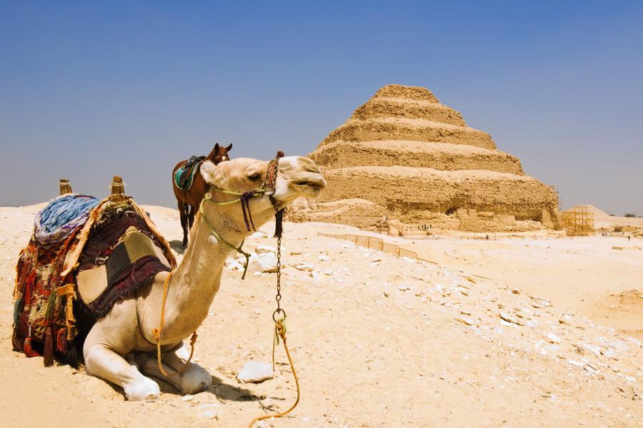 埃及杜拜雙國、中段飛機、五星河輪、哈里發塔、棕梠島11日
