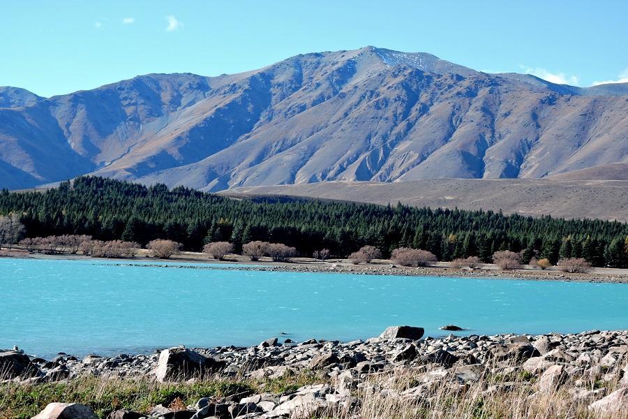 清境紐西蘭南北島 地熱噴泉 峽灣遊船 螢火蟲八日
