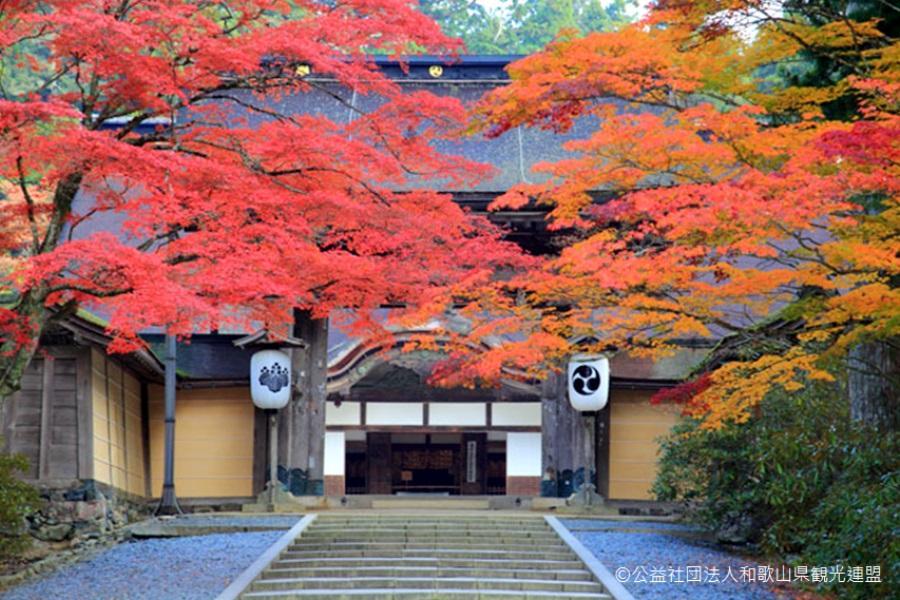 《楓雅南紀》珍愛紀州~秋意高野山.紅葉之谷空中漫步5日