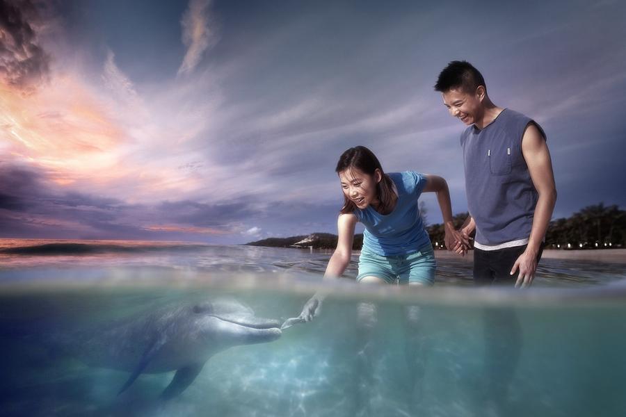 【蜜月典藏】天閣露瑪渡假村、餵海豚、華納電影世界、5星酒店7日