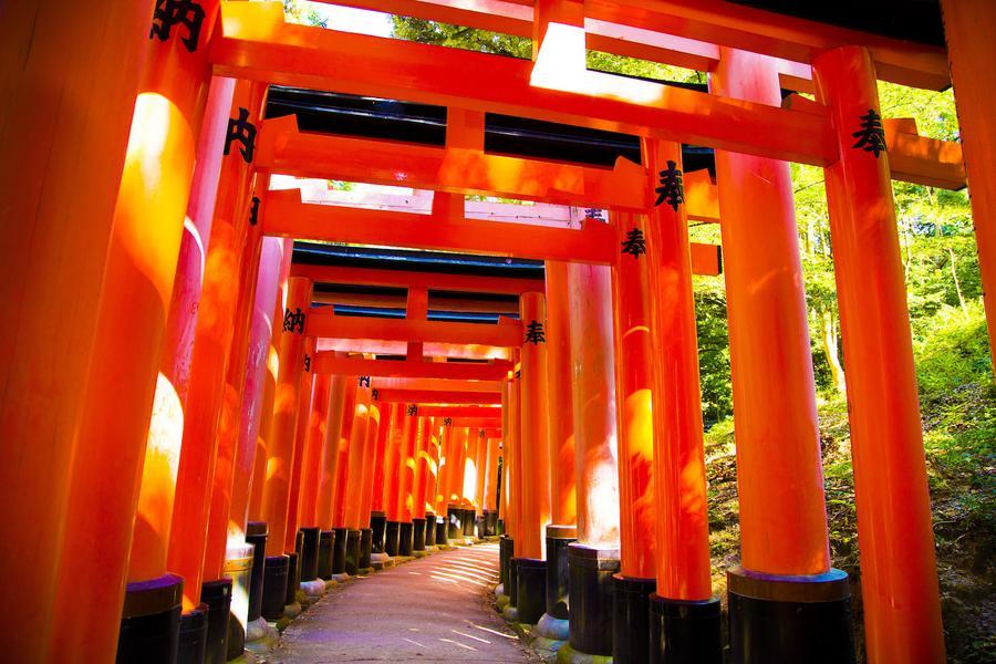 【閃樂大阪】日本京都伏見嵐山大阪吃喝玩樂自由散策4日