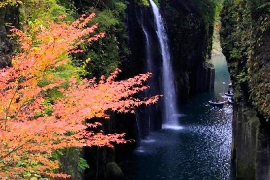 【楓樂南九州】櫻島火山、高千穗峽、磯庭園、霧島神宮、指宿砂浴5日