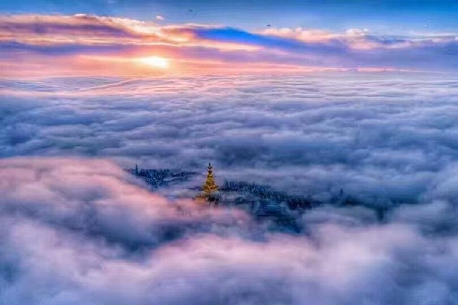 雲上金頂天下峨嵋、熊貓基地、水利工程都江堰、成都過大年錦里廟會六日