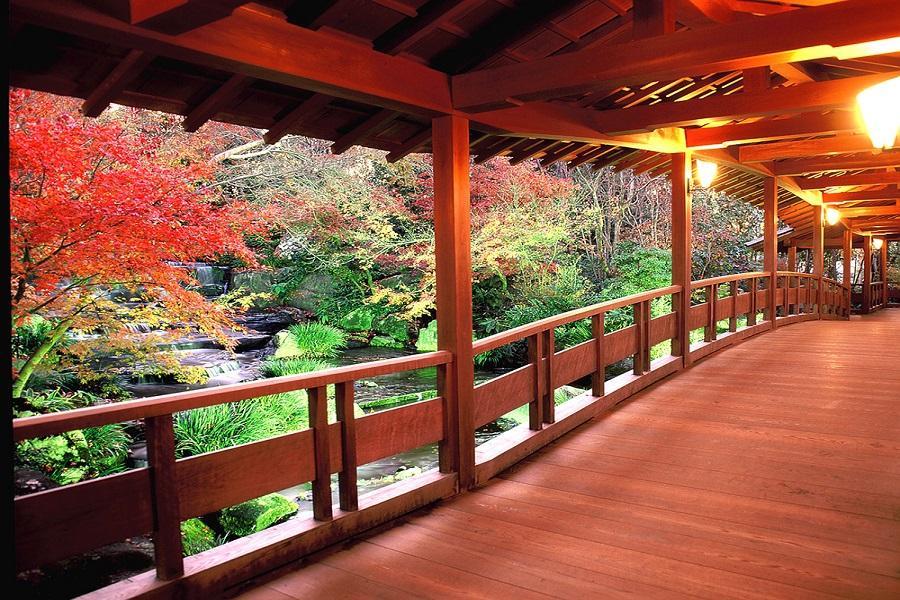 【楓景樂趣】姬路城岡山後樂園神戶有馬箕面山大阪散策5日