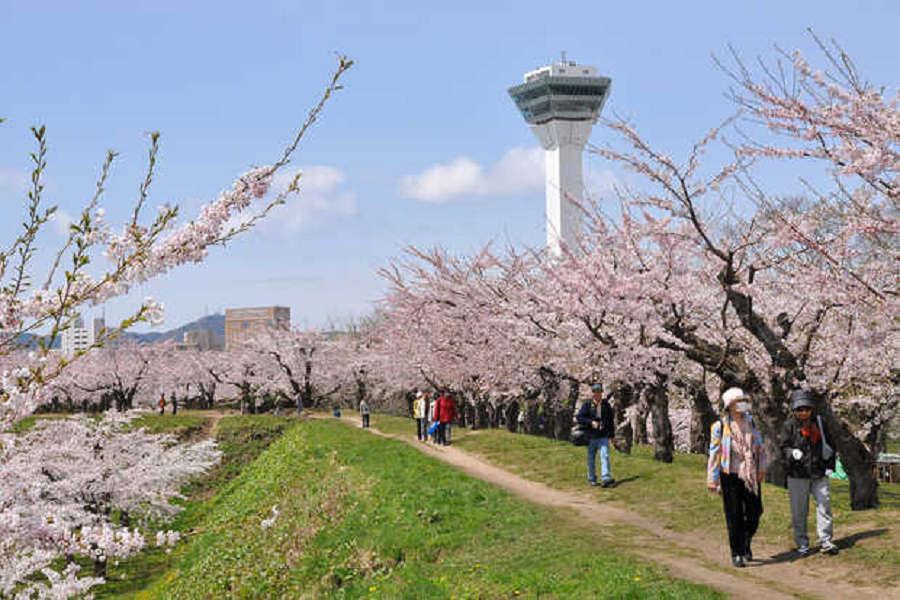 【北海道追櫻超值樂】登別櫻花隧道、函館夜景、三大螃蟹、札幌摩天輪5日