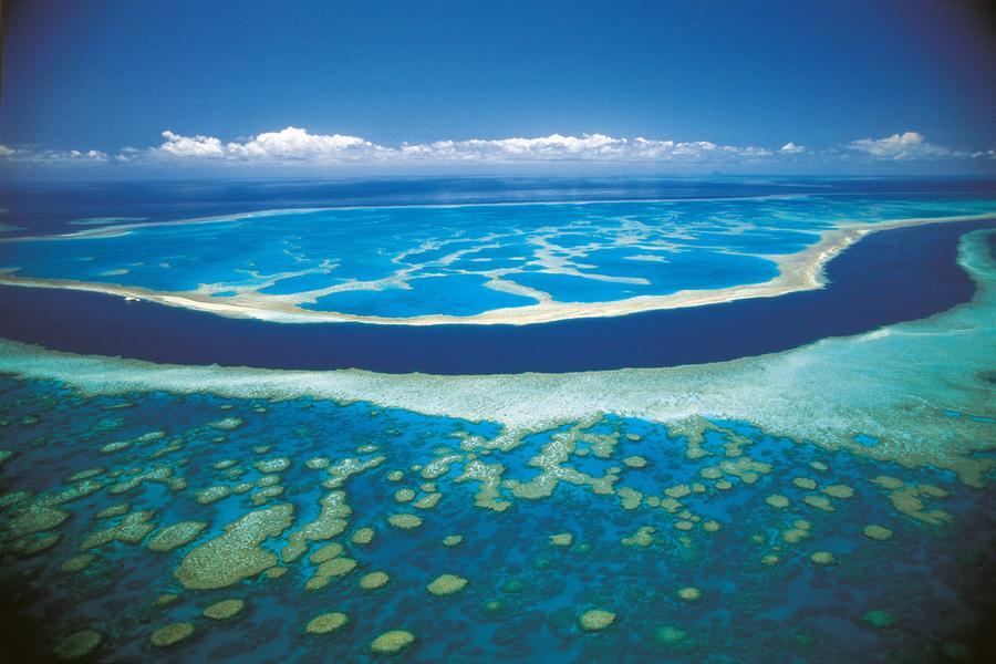 國泰萬象★海水正藍~布里斯班農莊+凱恩斯大堡礁8天