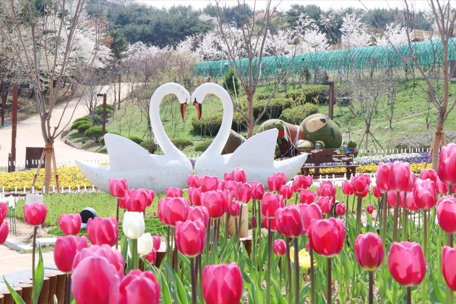 【不進保肝】伽倻主題公園、前山展望台+纜車、柿子酒莊、塗鴉秀超值5日