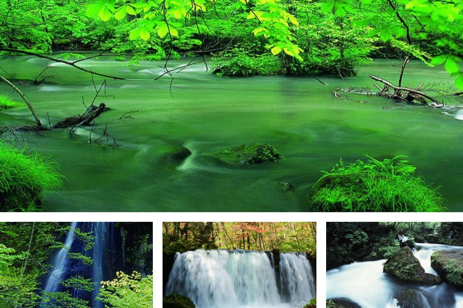 【東北秘境6天】由利小火車、白神山地、奧入瀨溪、盛夏紫陽花6日