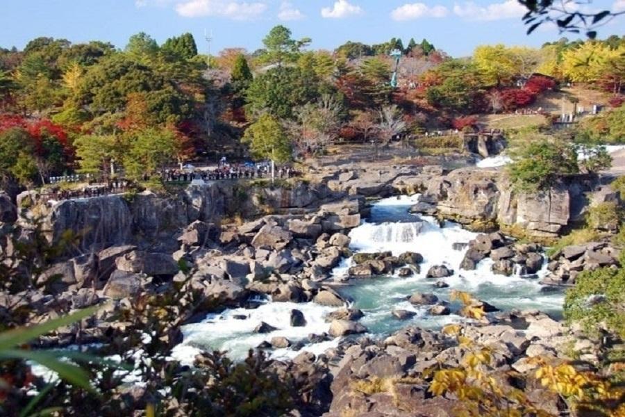 【秋遊熊本鹿兒島】可口可樂工廠、指宿砂浴、曾木瀑布、熊部長辦公室5日