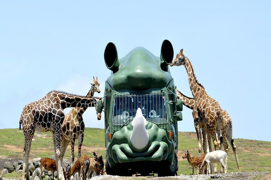 【春節九州玩雪】由布院之森、野生動物園、九十九島、柳川船、黑川散策6日