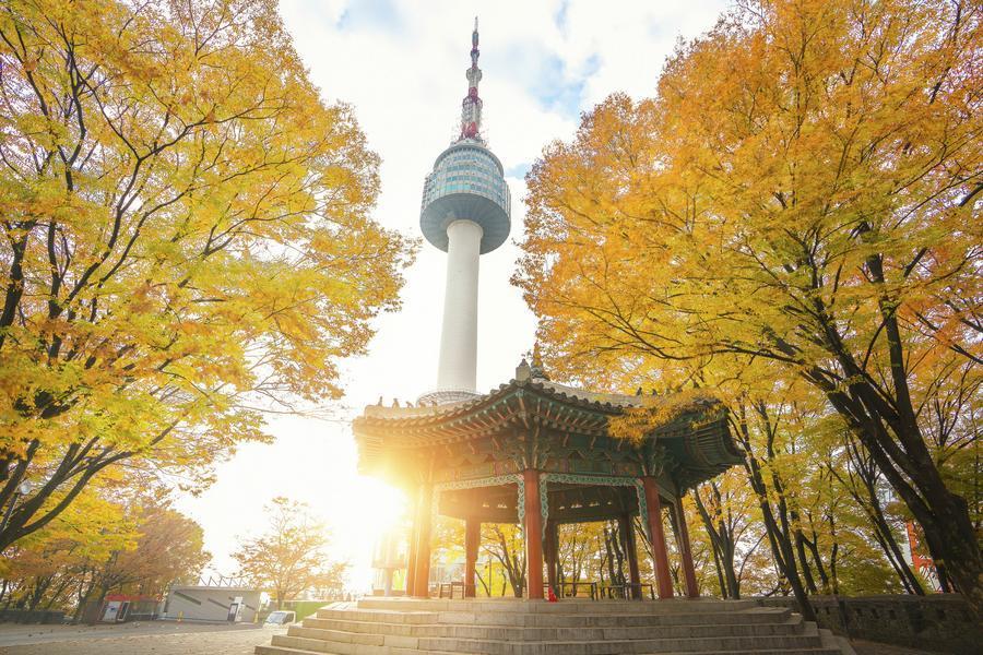 【買一送一】韓國浪漫南怡島、兩水里、鐵道自行車、韓屋散策、塗鴉秀5日