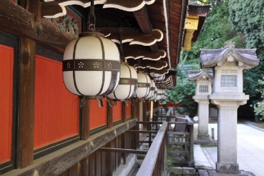【入住送早餐】福岡康富特酒店自由行5日(台灣虎航-每週四、日出發)