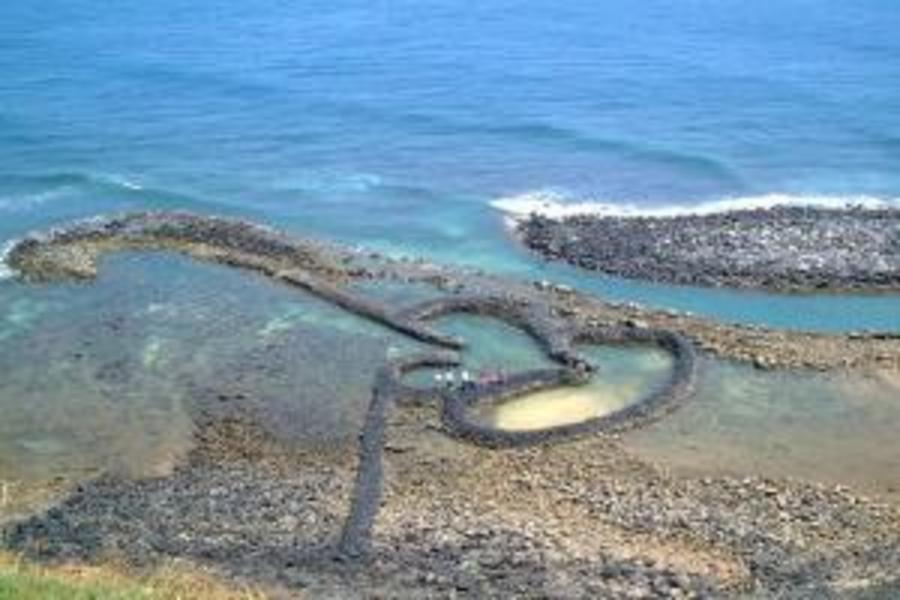 探索南海二島、觀光海牧釣魚趣三日(高雄出發)