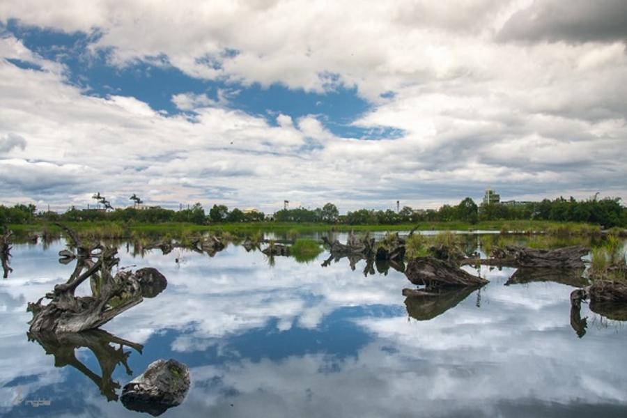 【常春樂活】宜蘭梅花湖.一佳村青草園五行養生料理.羅東林業文化園區一日