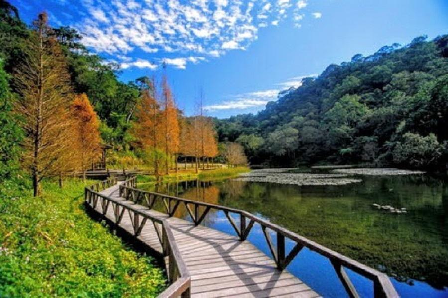高鐵+東南賓士車.安永心食館.福山植物園.幾米公園一日遊(左營出發)