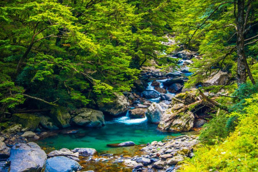 武陵福壽山清境農場、合歡溪步道櫻花鉤吻鮭、宜蘭赫蒂法莊園溪和水產嚐鮮三日