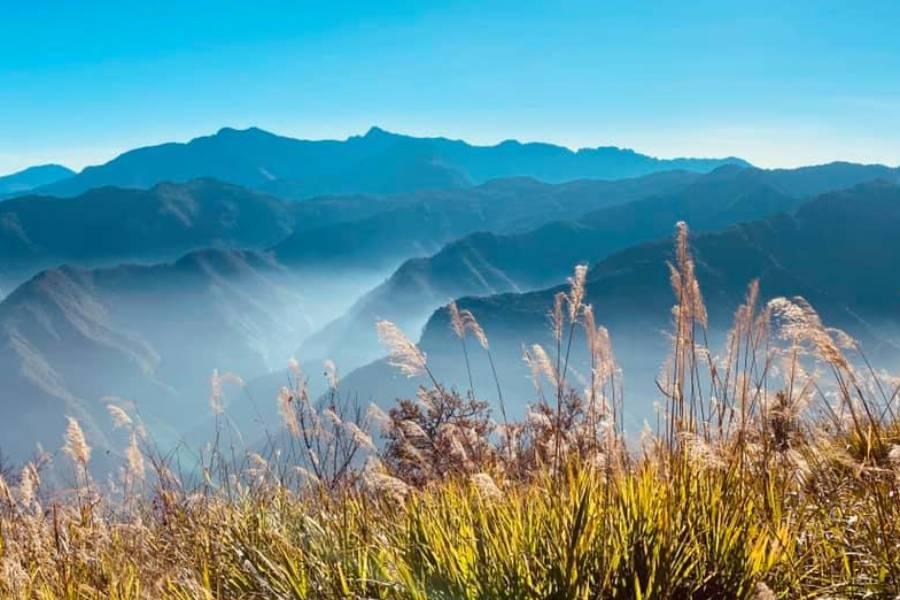 阿里山綠海森林、奮起湖檜意活村懷舊風 、墾丁藍色海岸高雄愛河智選假期三日