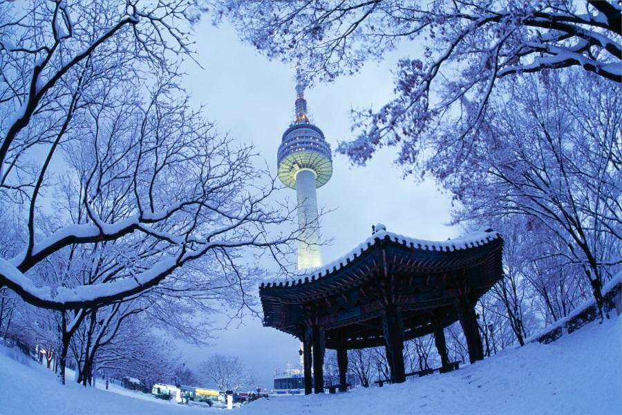 【不進人蔘土產】五星首爾滑雪~採草苺&果醬DIY.汗蒸幕.長腳蟹5日
