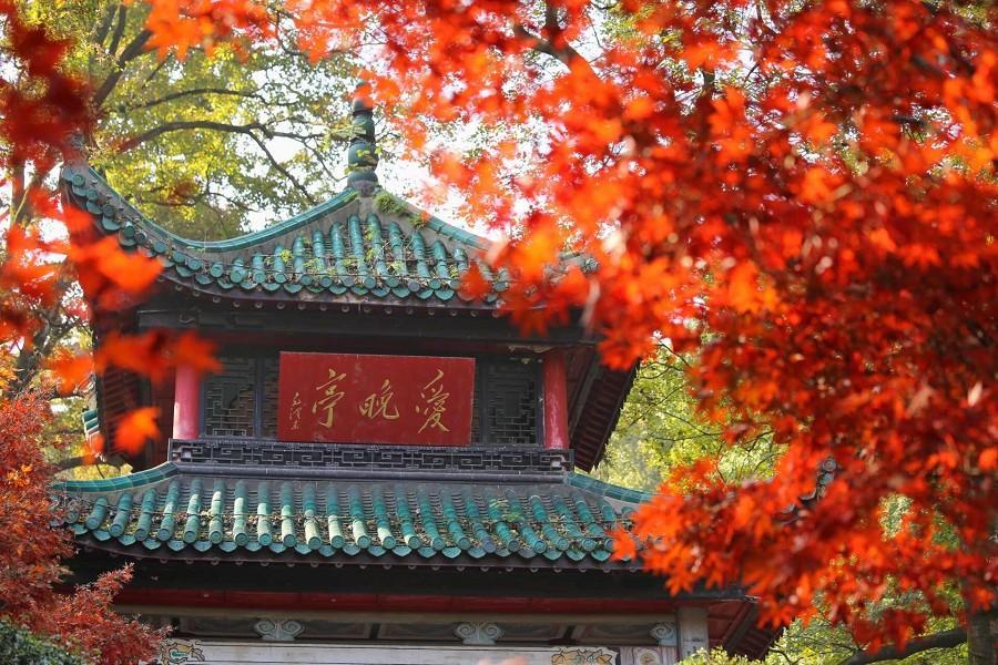 張家界鳳凰古城、玻璃橋、狐仙秀、下午茶8日(升梅溪湖金茂、皇冠假日)