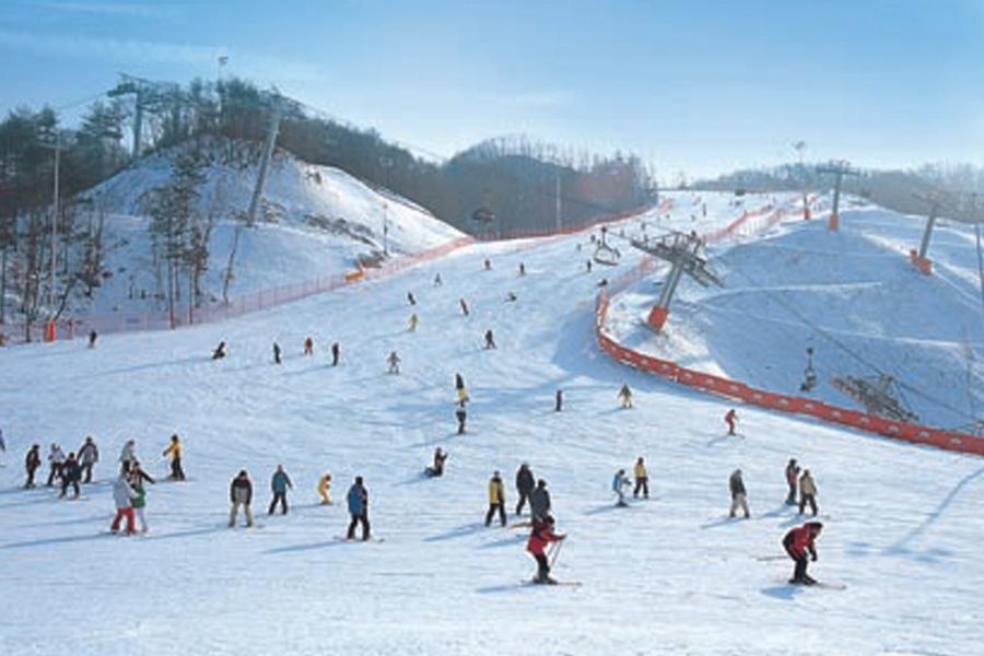 【升等陽智滑雪場】神秘38度線.南怡島.滑雪.愛寶雪之園.水族館4日(早晚)