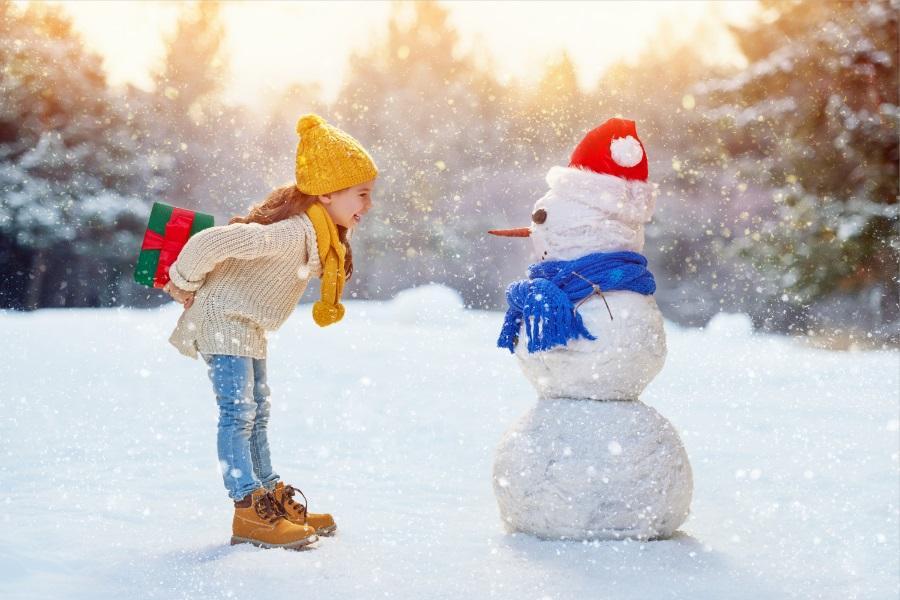 【不進人蔘.保肝】冬戀南怡島、滑雪樂、漢江遊船&麵包秀、升等明洞4日