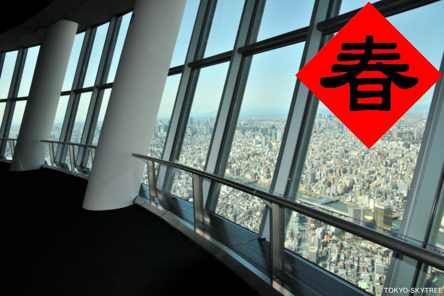 【登上晴空.賀鼠年】歡樂動畫館.晴空塔展望台.橫濱東京.迪士尼5日
