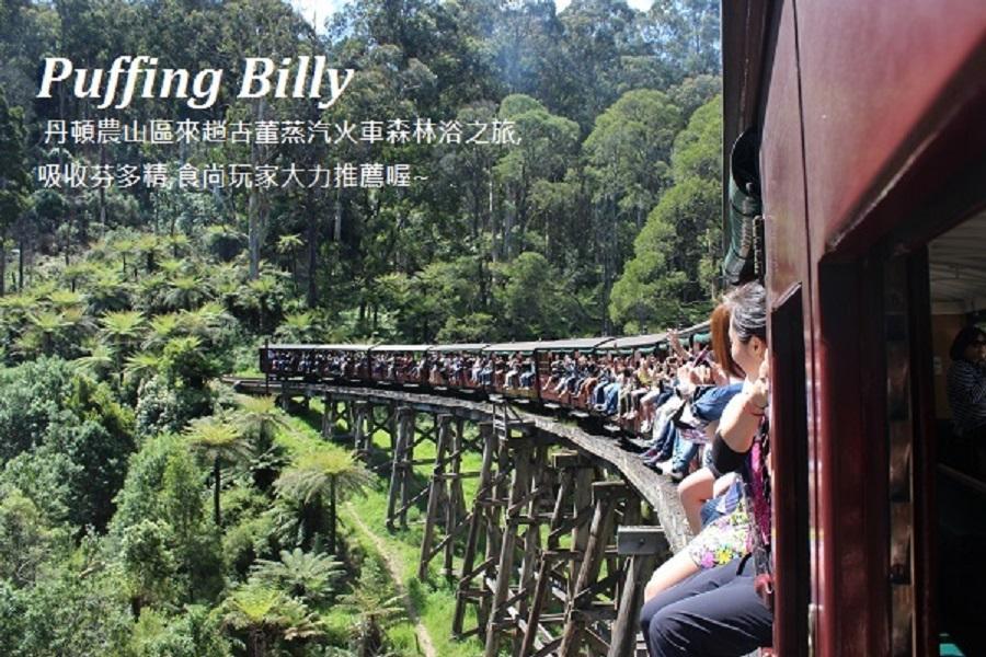 東澳黃金雪墨全覽八日~夢幻世界+無尾熊抱抱、企鵝、火車、雪梨塔旋轉餐廳