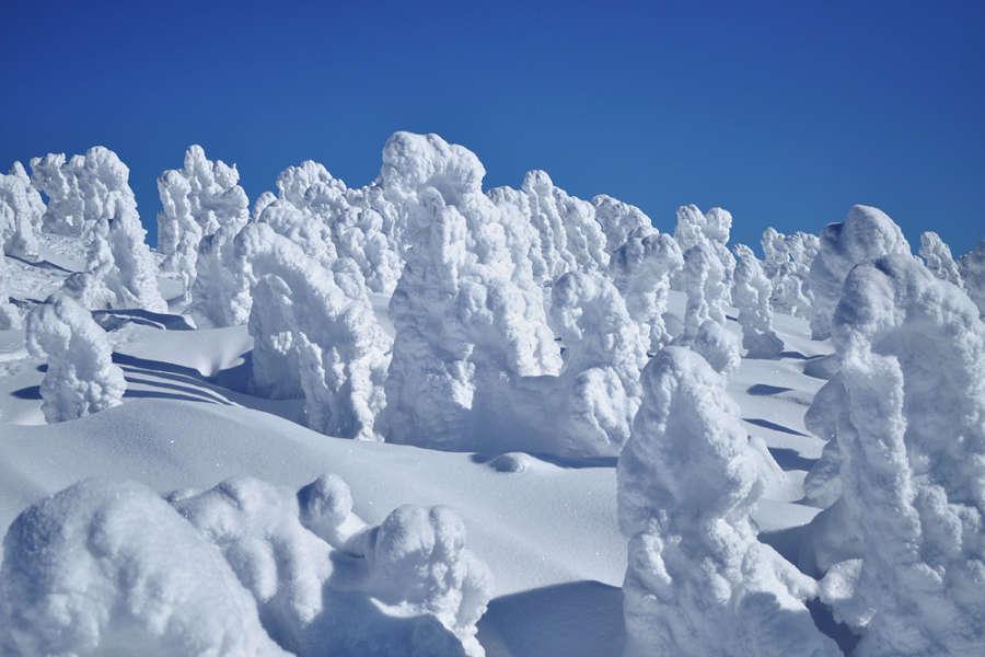 【元氣日本PAK】奧入瀨星野之宿~雪漫絕美樹冰秘享睡魔暖湯延養5日