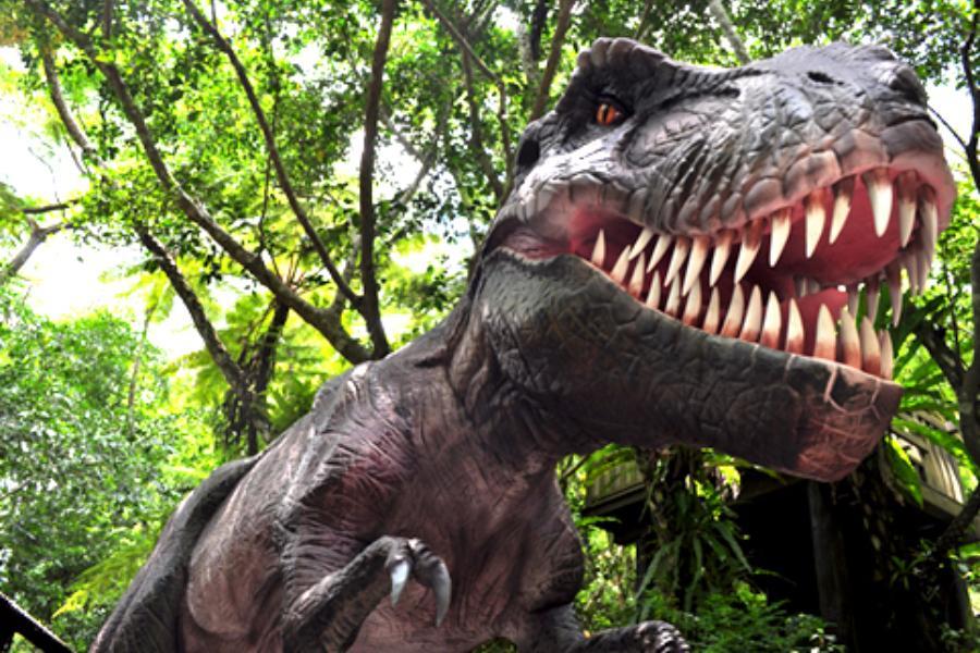 【年後清艙沖繩半日自助遊】Dino恐龍公園山原亞熱帶之森、海洋博公園、瀨長島暢遊四日