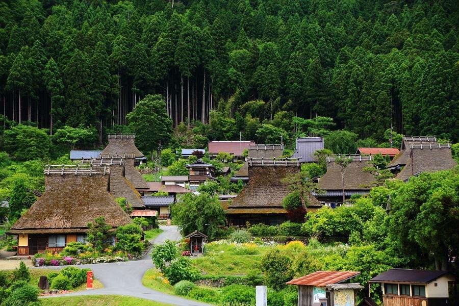【丹後關西】神戶有馬.天橋立.京都美山町.嵐山.大阪散策5日