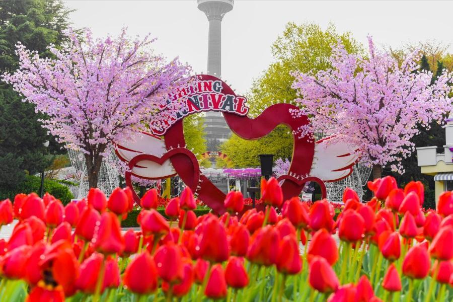 【不進人蔘保肝】釜山草莓酒莊、EWORLD樂園、汗蒸幕、鯨魚生態館5日