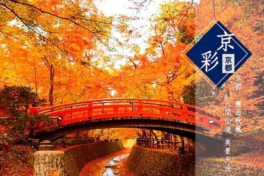《楓雅紅葉谷》秋紅京都.奈良銀杏道.白鷺姬路城.箕面瀑布深秋之旅5日
