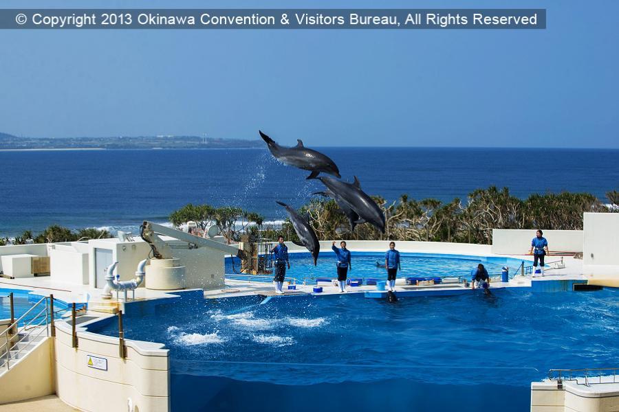 【沖繩歡樂漁市嘗鮮】玻璃村、泡盛酒廠試飲、海博水族館、暢貨中心4日