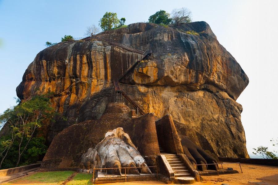 【錫蘭紅茶豪華假期】斯里蘭卡文化和大自然之旅 9日