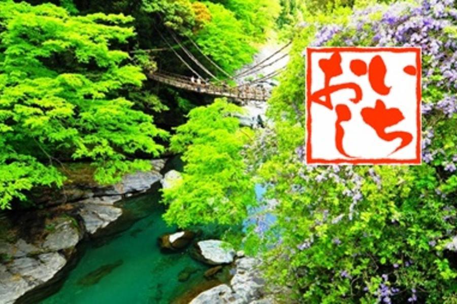 《日本秘境》四國山陽~天空之鏡 X 唯美和風.姬路城.美觀古街漫步5日