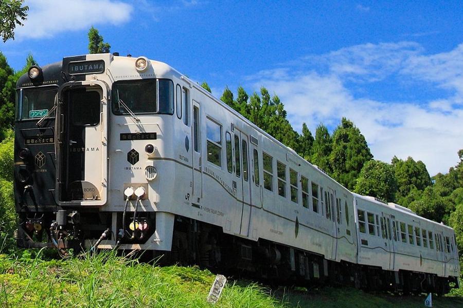 【熊愛南九州】黑白玉手箱列車、櫻島、牧場DIY、磯庭園、指宿砂浴5日