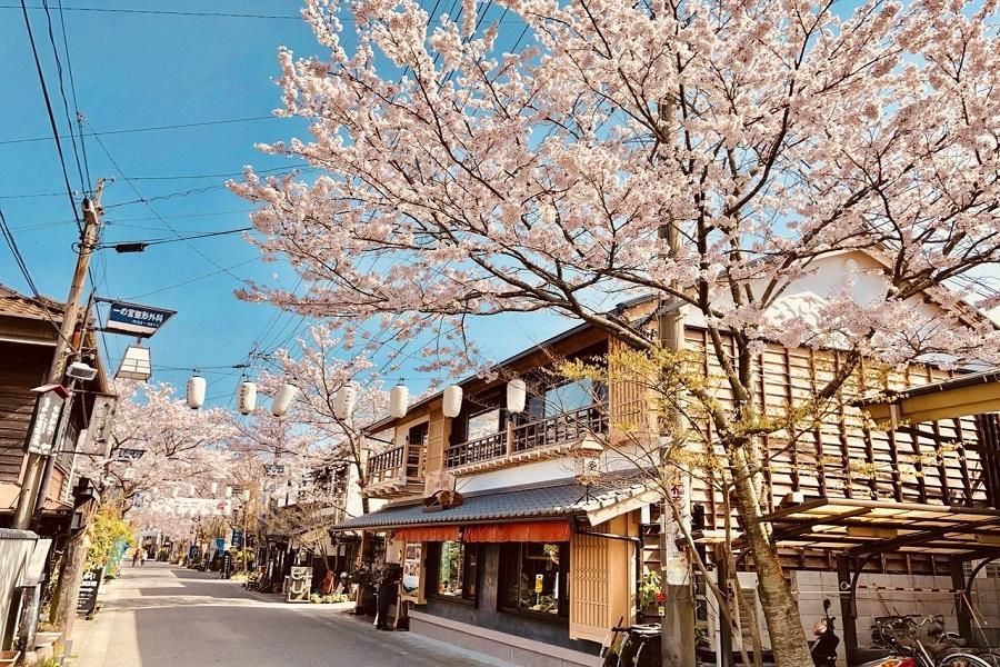 【熊本賞櫻、輕旅行】高千穗峽、宮地湧水群、部長辦公室、福岡熊本逛街5日