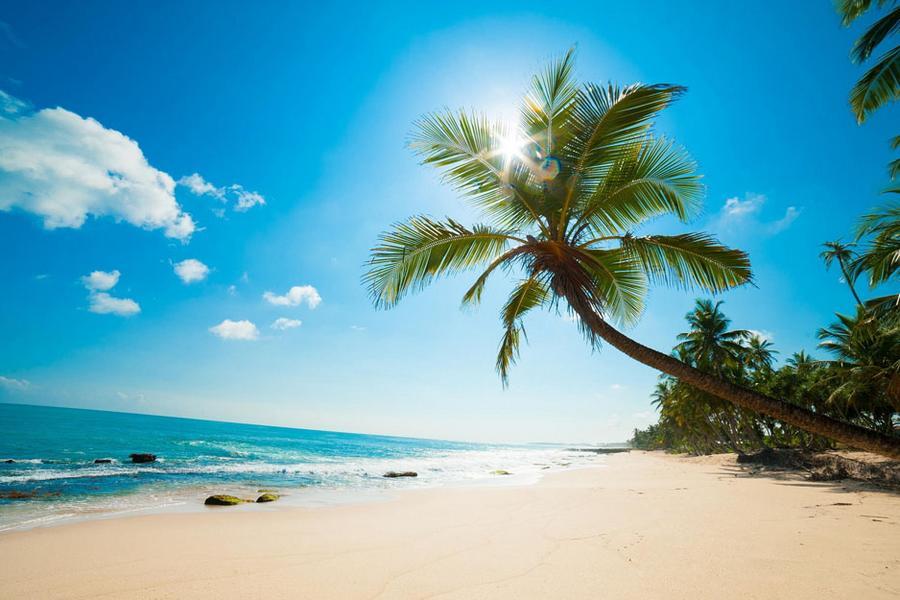 泰@悠閒。叮叮島半日遊蘇梅五日《含稅金 贈小費》