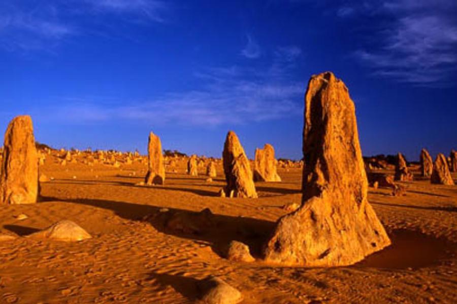 國泰萬象★湛藍海天 鐘乳石洞、火警樹-西澳野趣遊7+1天