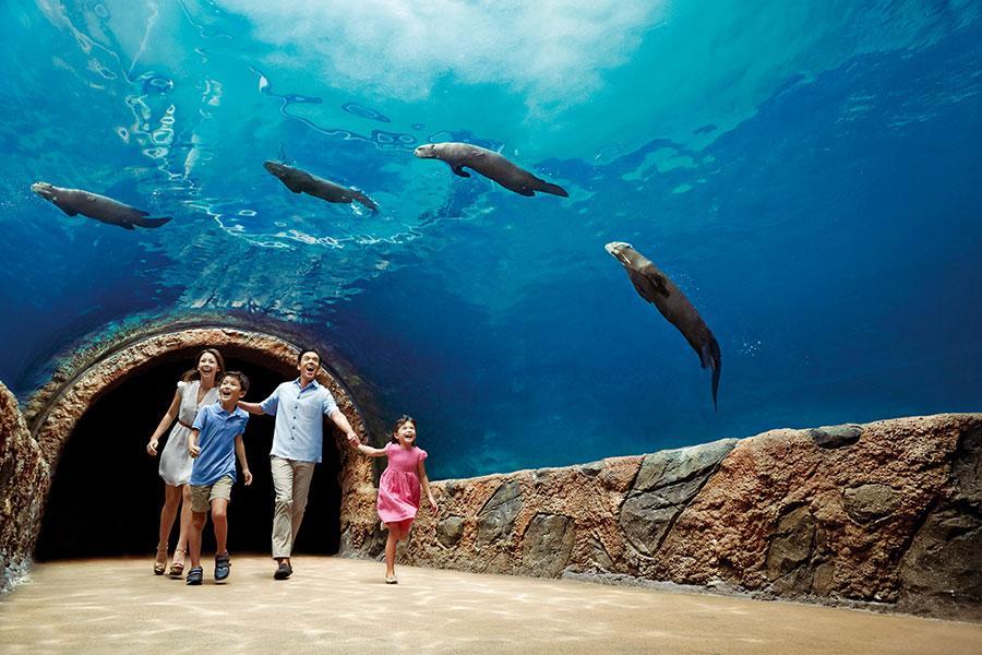 樂遊新加坡~克拉克碼頭遊船、環球、生態園、夜動 四日
