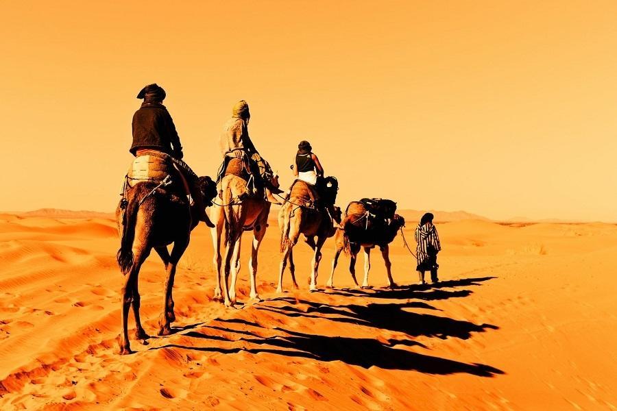金色埃及、尼羅河郵船、阿布辛貝10天