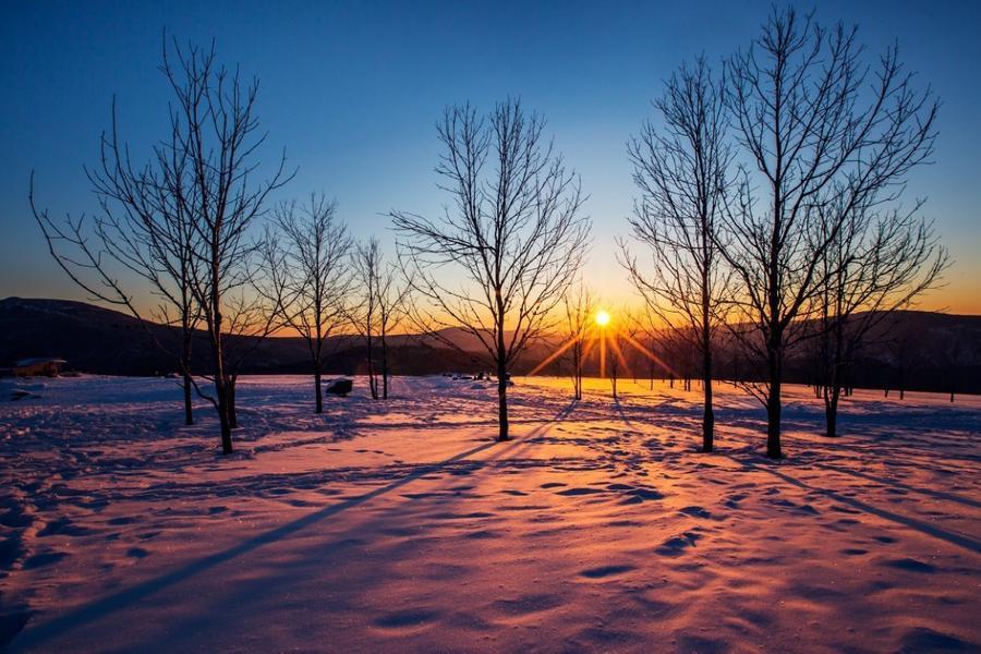 【長榮航空】東北雪鄉戲雪、羊草山觀日出、虎林園景區五日