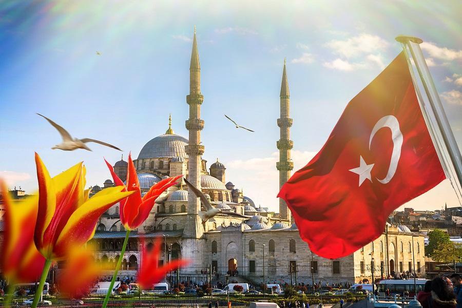 【賺很大】土耳其鬱金香花季、伊斯坦堡、居爾哈尼公園、棉堡、送網卡9日