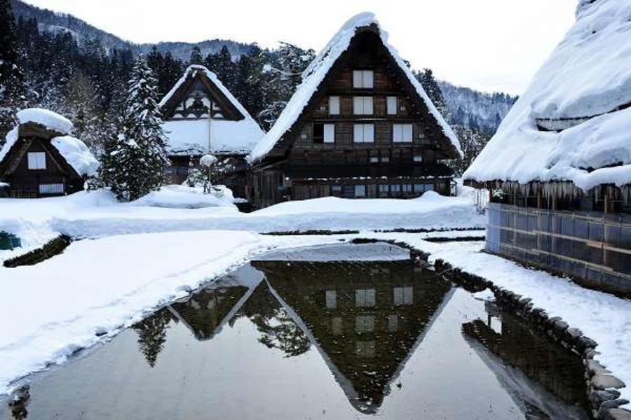 富山牧場、名古屋樂購、合掌村奇景、彥根城名園5日