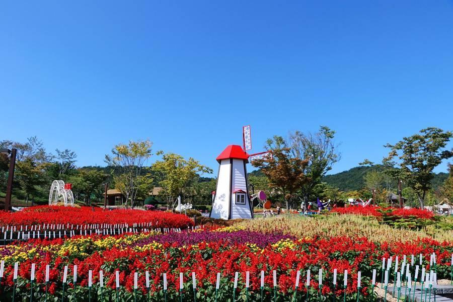 釜慶好威 加耶主題公園+塗鴉秀、汗蒸幕、泳池咖啡廳下午茶、文化古都5日
