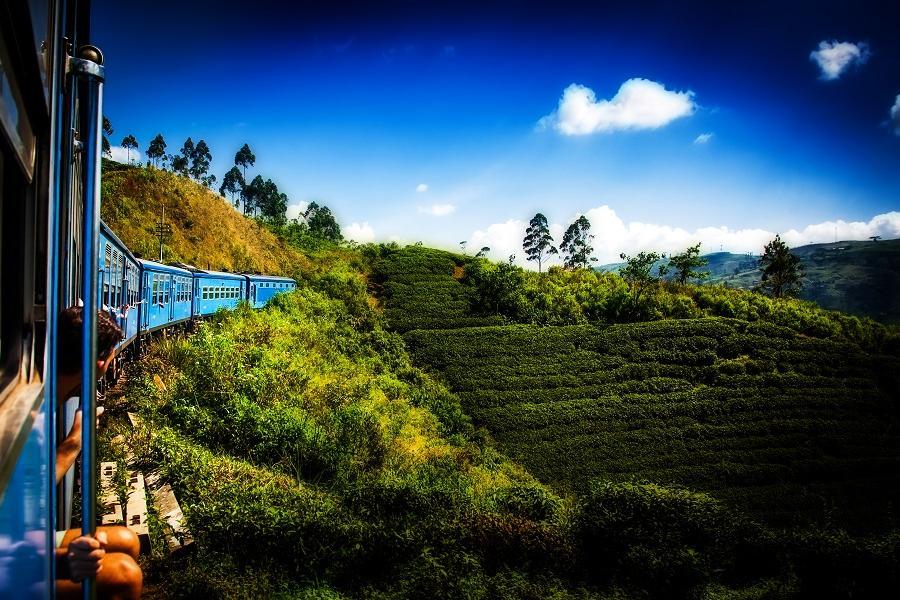 【泰航錫蘭假期】 春節斯里蘭卡、升等世界最美旅館、高山火車、獅子岩8日
