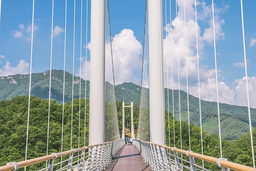 韓國愛的迫降~漢灘江天空之橋、晨靜樹木園、變裝遊古宮、安妞仁寺洞5日